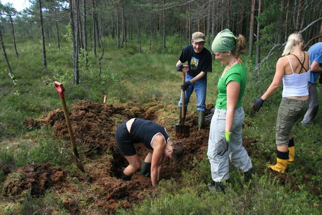 Peat Bog Restoration Workshop Estonia