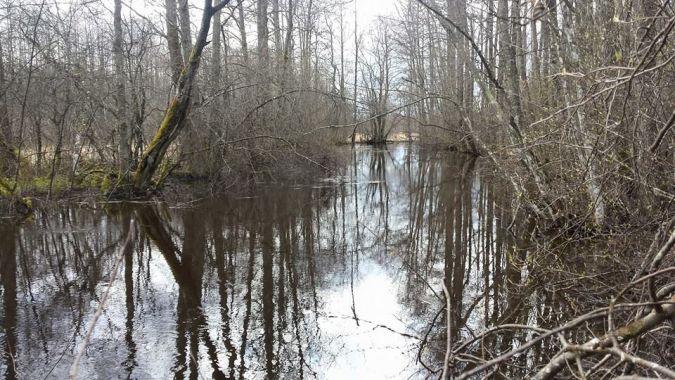 Oksa jõgi Ärmal