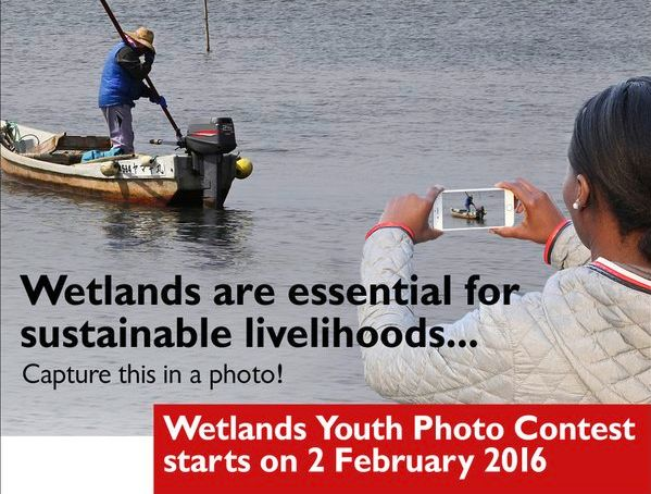Wetlands Youth Photo Contest